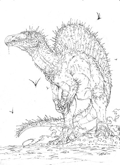 Pictures of Realistic Spinosaurus Coloring Pages - kidskunst.info