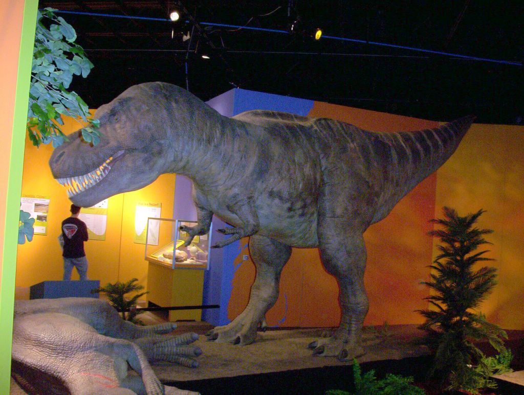 Hit the road travel blog cleveland museum of natural history Dinosaur museum ohio
