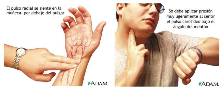 polymyalgia rheumatica treatment without steroids