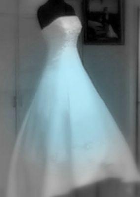 Article: The Bridegroom