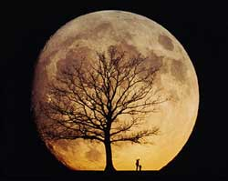 lua. (fonte: http://skyandtelescope.com/mm_images/2185.jpg)