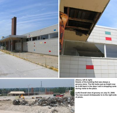 northland shopping center grocery store demolition photos by toby weiss