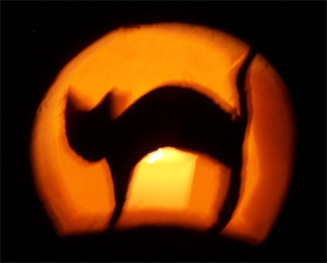 Silhouette of a Halloween cat against a moon