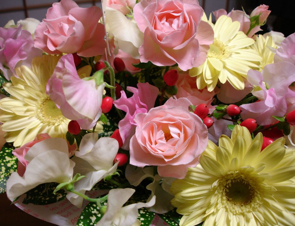 Mboogiedown japan happy birthday to me but not as suprised as the delivery man was to see a foreigner sending flowers is definately not a japanese custom mitsu is awesome izmirmasajfo