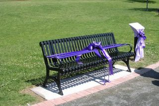 Commemoration bench and plaque before unveiling, with purple ribbons across bench and covering over plaque to the right.