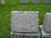 William Pitts stone