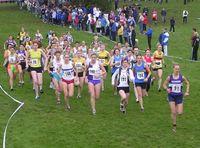Start of the ladies' race