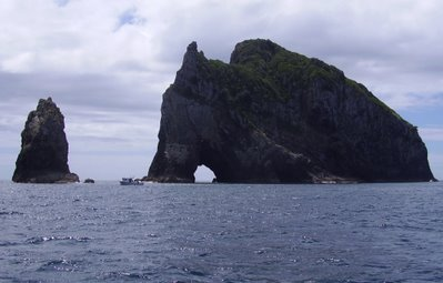 """Hole in the rock"" off Cape Brett"