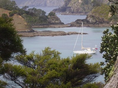 Kika at anchor in the Bay of Islands