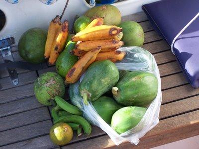 Fruit gathering bounty