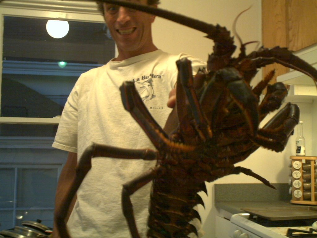 Shawn92101 in Florida: Giant 10 Lb Lobster Caught off San Diego coast