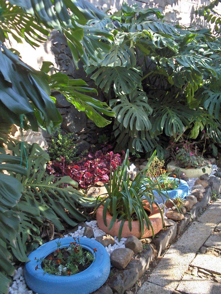 Jardim de pedra cantinho dos pneus for Esplanada dos jardins 1