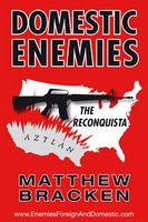 GUNS Magazine Review of Domestic Enemies: The Reconquista