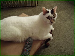 Sam lays claim to the remote.