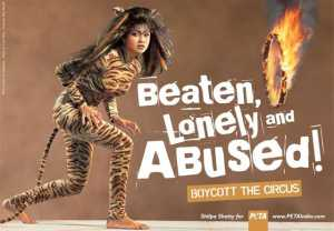 Here's irony - Shilpa Shetty as a circus tiger for PETA's Boycott the Circus campaign (2003) The Lady volunteered