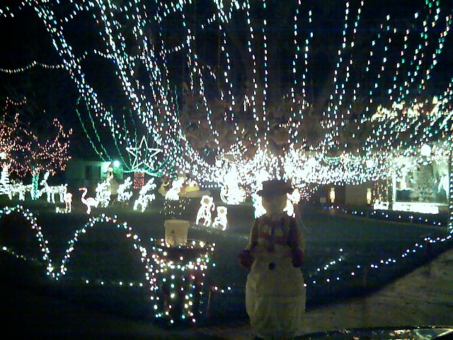 Since We Lived In Our First House, Near Miles Elementary In Outer Forest  Hills, We Have Gone To Two Locations For Christmas Lights.