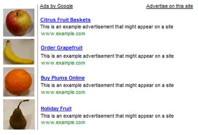 Sample adsense 1