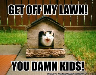 lolcat get off my lawn