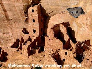 mohammed cat jihad mahomet