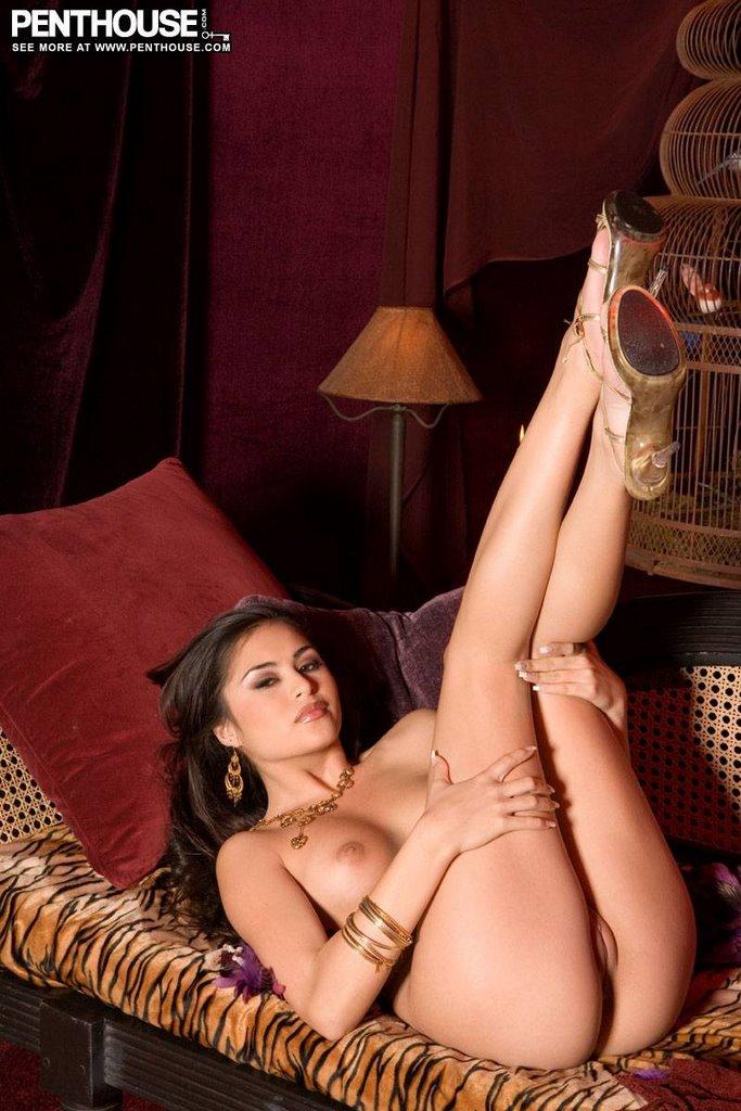 порно актриса michelle maylene