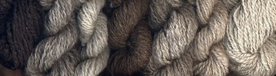 My handspun North Ronaldsay yarns in a range of colors.