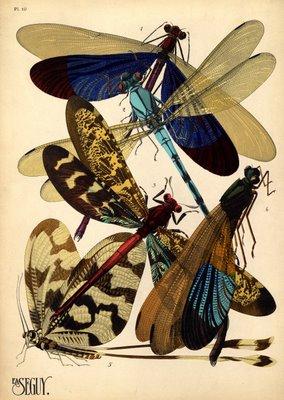 artdeco insect prints