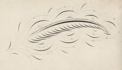 feather calligraphy