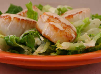 South Beach Diet Phase  Scallop Recipe