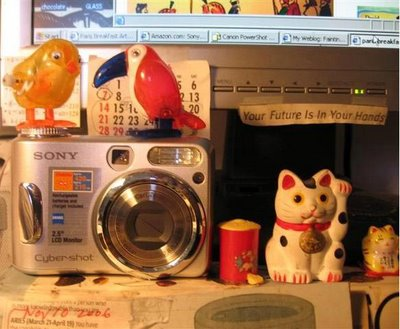 New birds in the house sitting on unused Sony..