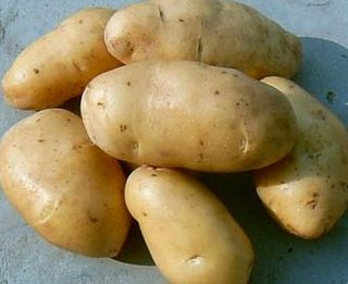 small potatos