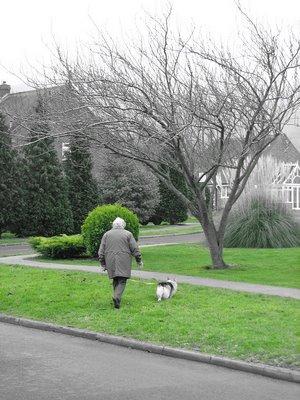 suburbia, christmas day 2006