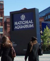 The National Aquarium In Baltimore