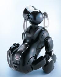 ¿Sueña Aibo con zorras eléctricas?