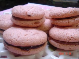 Yochana's Cake Delight! : Raspberry Chocolate French Macaroons
