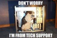 http://photos1.blogger.com/x/blogger/2783/325/200/876894/seehere.blogspot.com%20cats%20(26).jpg