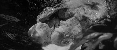 pod hatching (Siegel, 1956)
