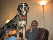 Right Wing Prof. & his  dog Boudreau