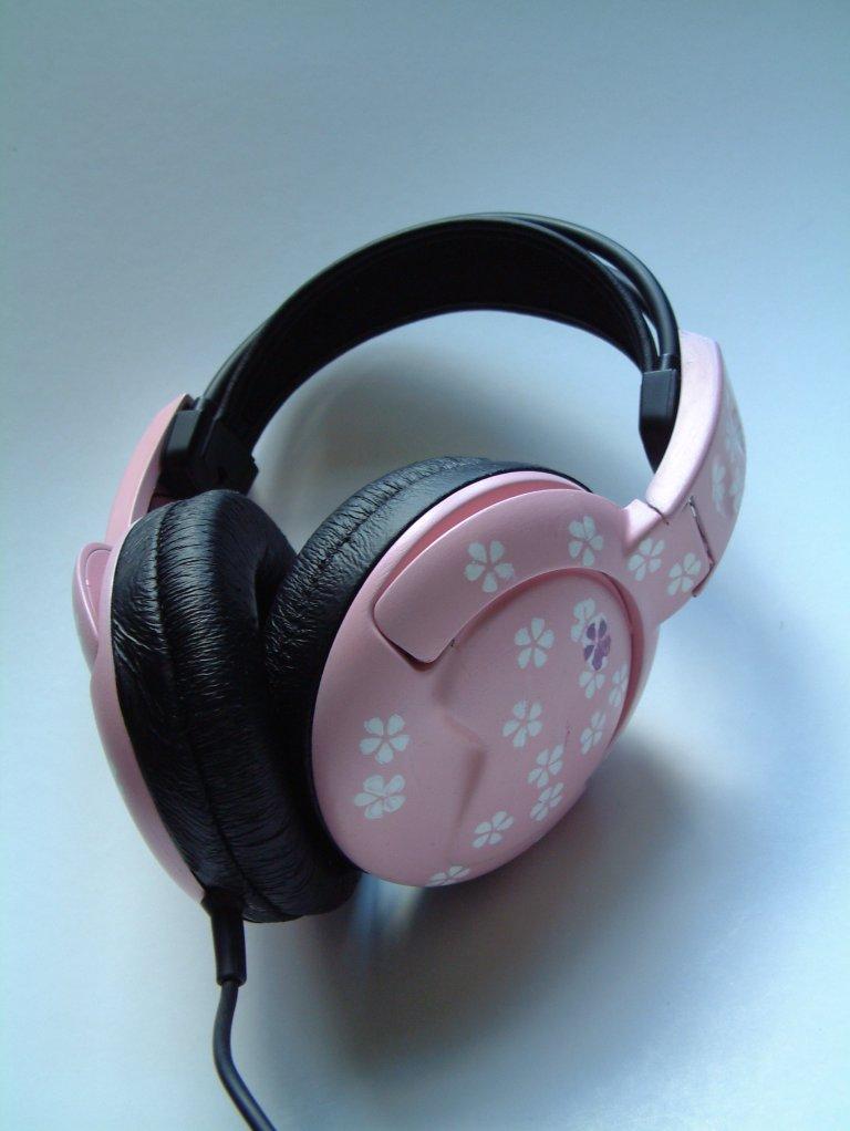 http://photos1.blogger.com/x/blogger/3091/4091/1600/186573/rosa-hodetelefon-3.jpg