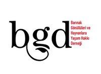 BGD...