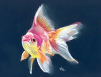 ryukin goldfish pastel painting