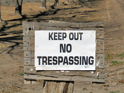 Pecans - No Trespassing
