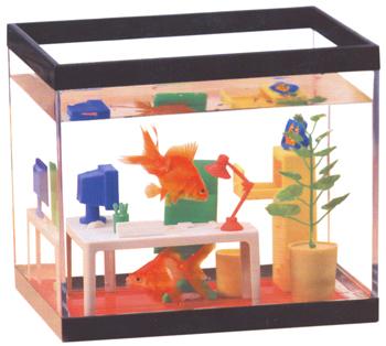 Regalos originales acuario para la oficina for Regalos oficina