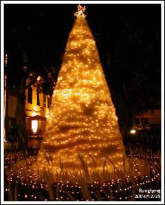 2004年游文富的白羽毛耶誕樹