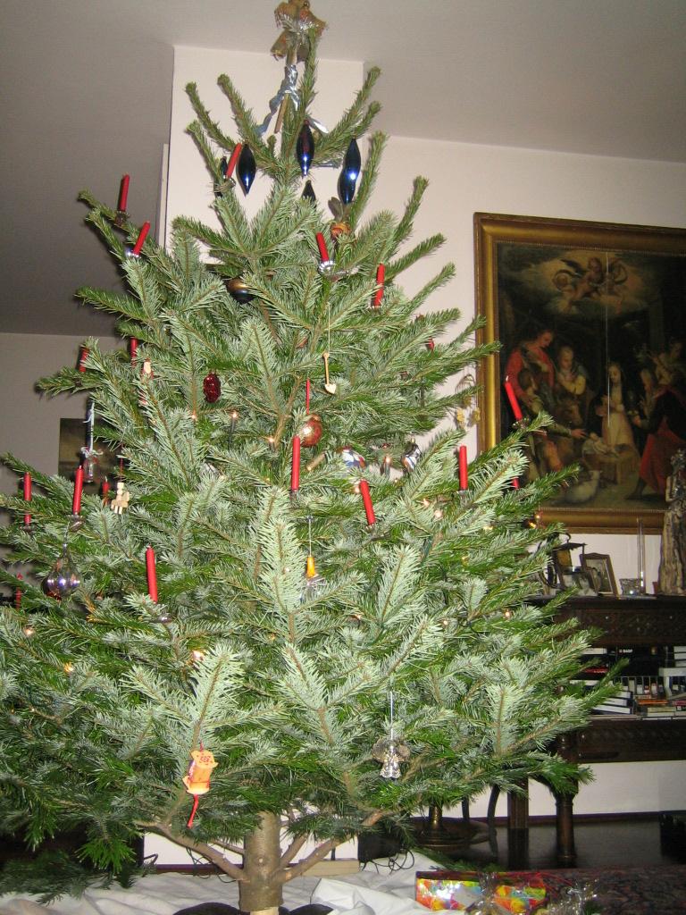 Saxanas Notizen: Vom Tannenbaum zum Weihnachtsbaum