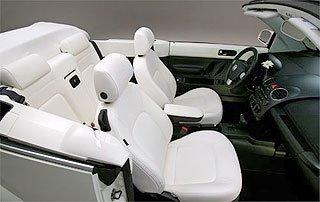 Volkswagen Special Edition New Beetle Convertible 3