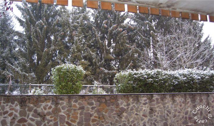 Cuochi di carta meme cosa vedo dall 39 ufficio bl 26 gennaio 2007 - Cosa vedo dalla mia finestra tema ...