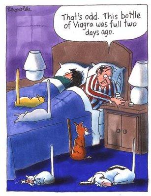 Viagra Erotic