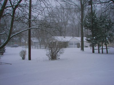 View of snowfall in Toledo, Ohio