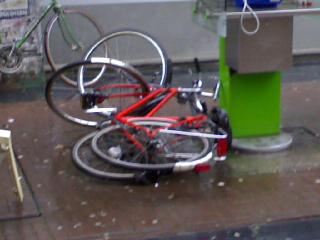 copulating bikes