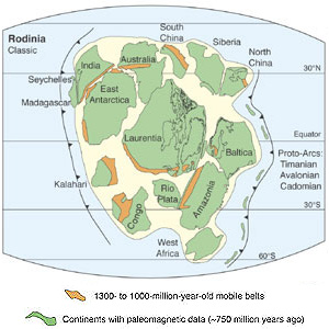 reconstruction of Rodinia, a Neoproterozoic supercontinent that began to form roughly 1.3 Ga during the Grenville Orogeny
